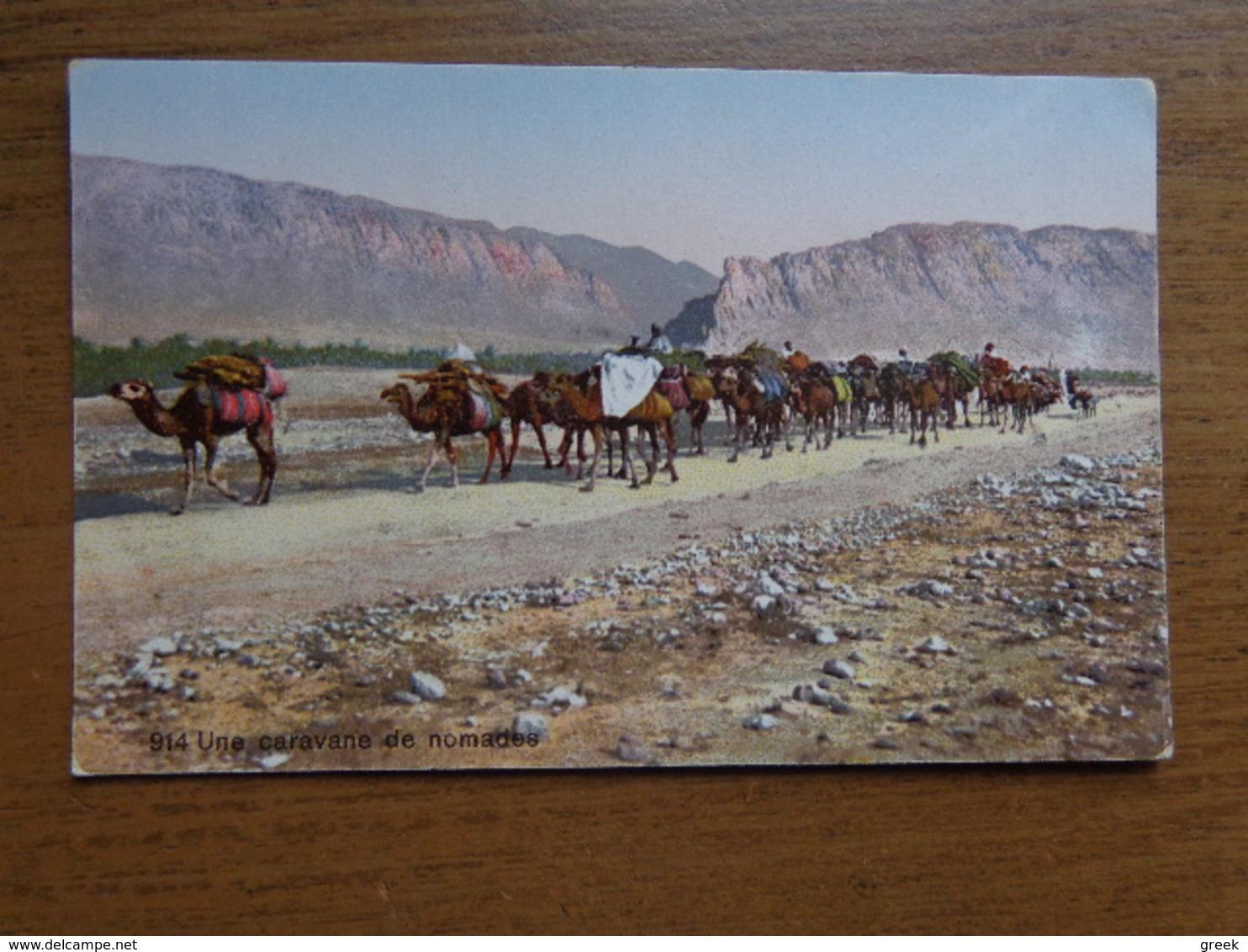 Kameel, Camel / Une Caravane De Nomades --> Written - Autres