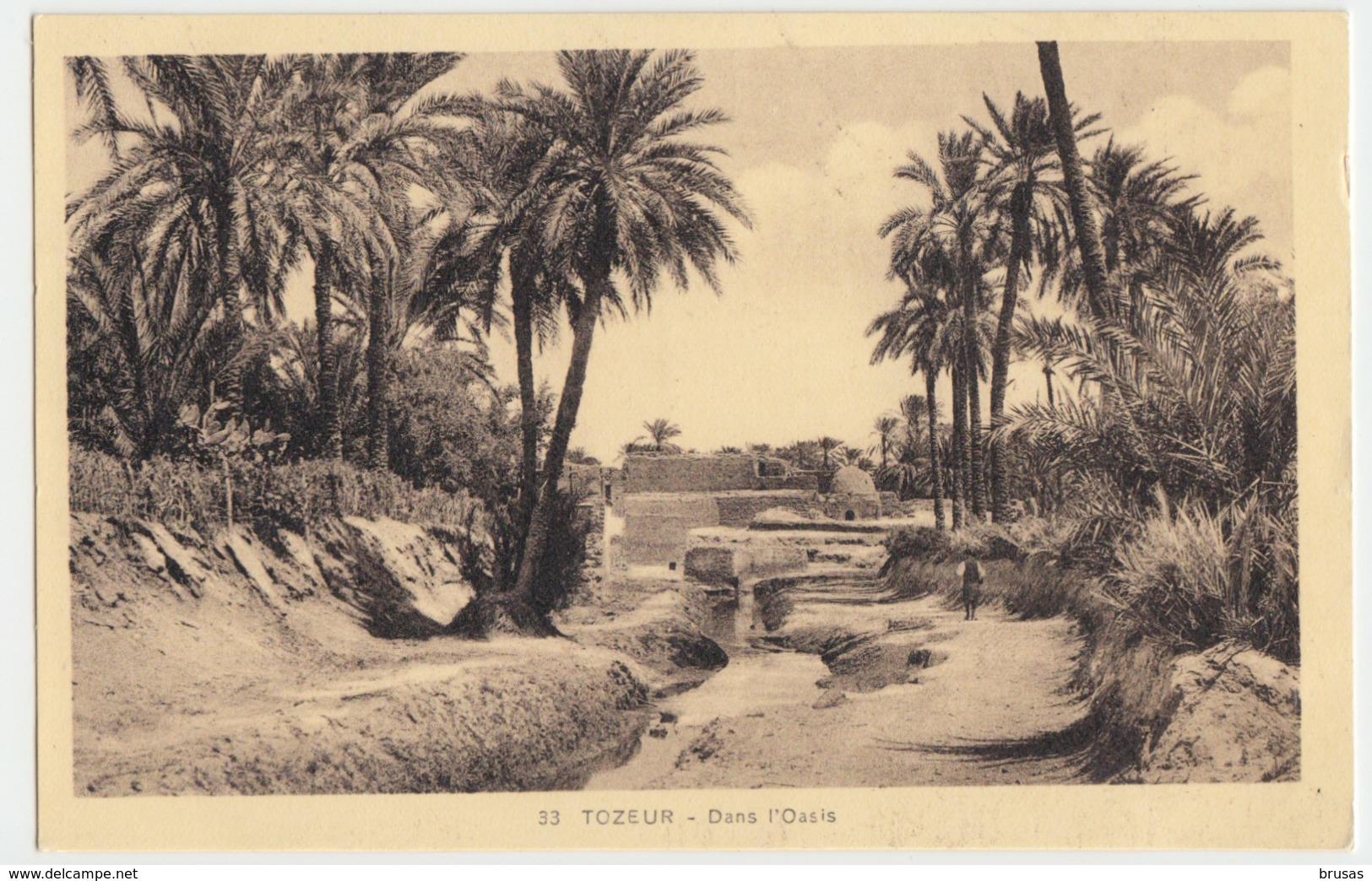 Tozeur - Dans L'Oasis - Tunesien