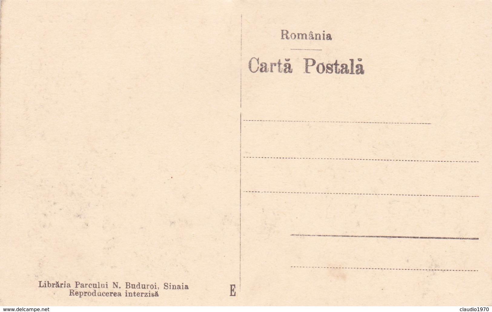 CARTOLINA - POSTCARD - ROMANIA - BIUROURILE COSTINESCU - Romania