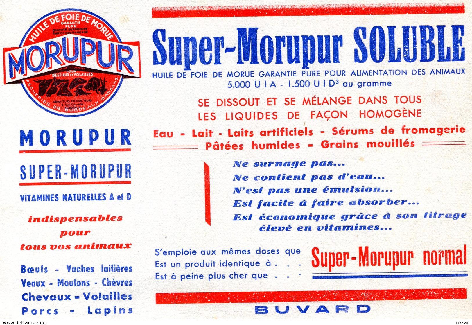 BUVARD(MORUPUR) - M