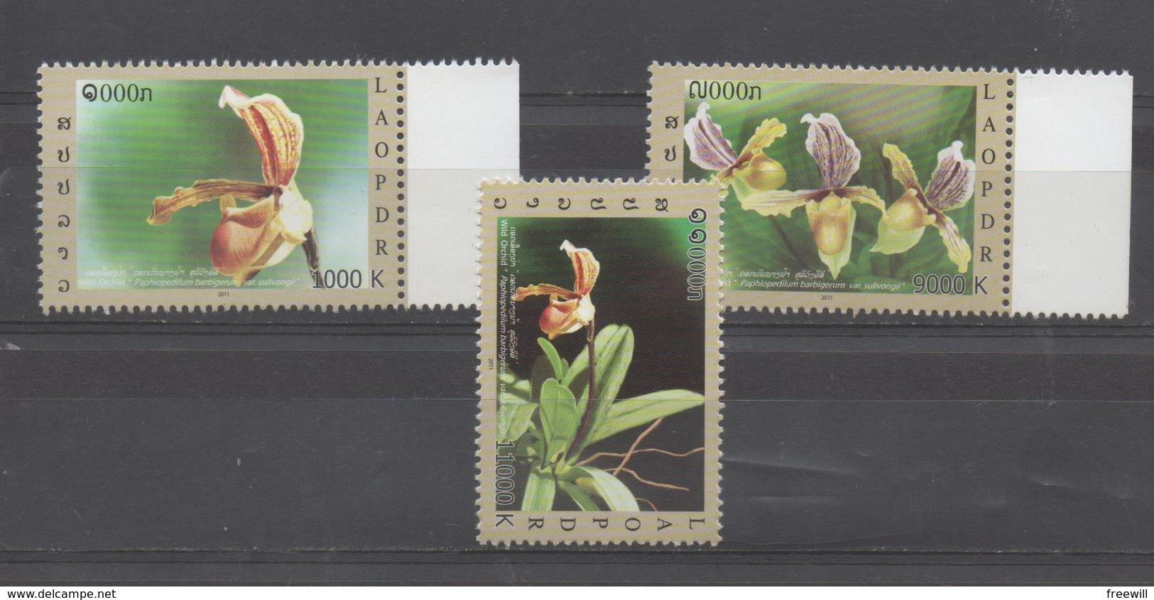 Fleurs -Flowers - Laos