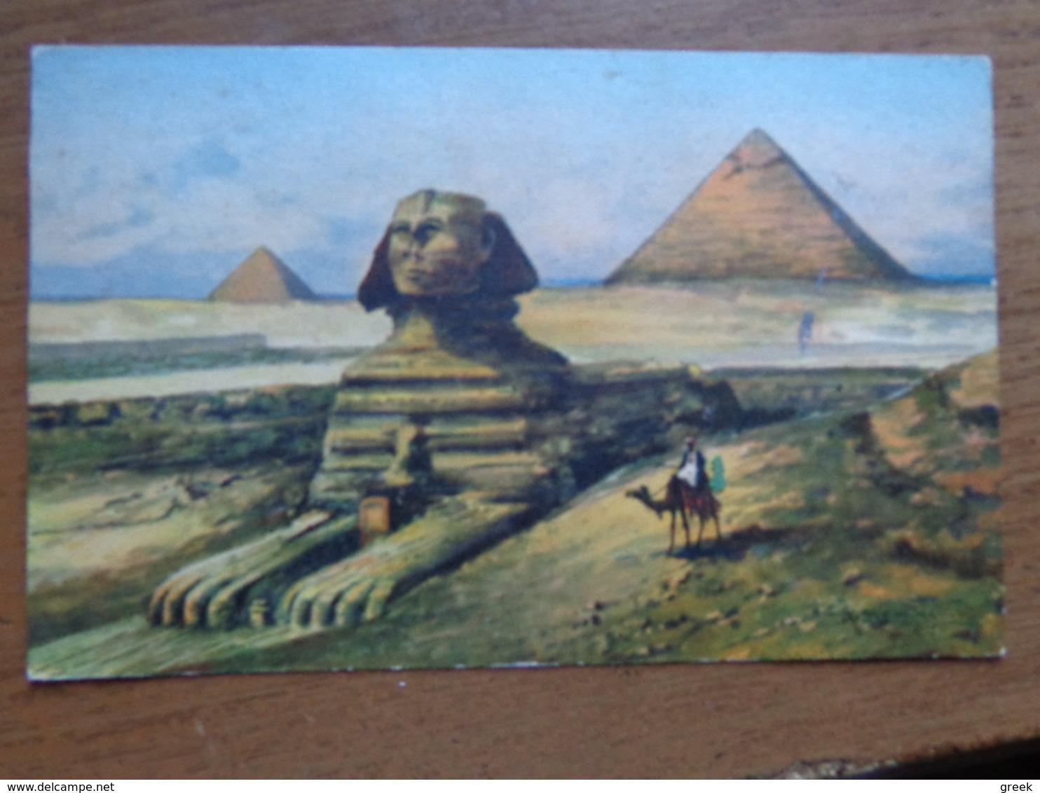 Kameel, Camel / Egypt, Cairo --> Written - Animaux & Faune