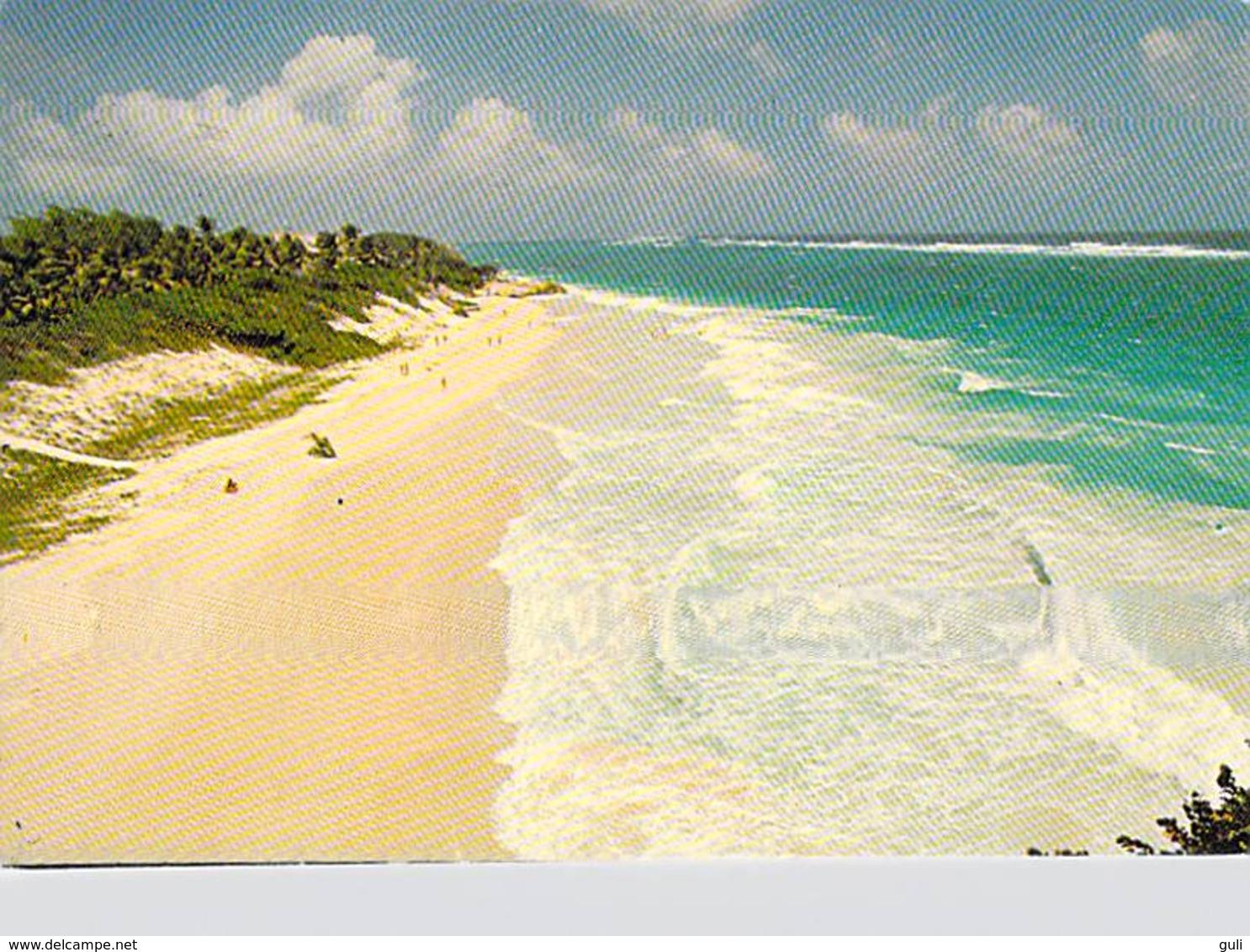 Amérique > Antilles > Barbades -BARBADOS  Lot 2 Cartes Cpsm - Scans R/V- TIMBRE STAMP * PRIX FIXE - Barbades