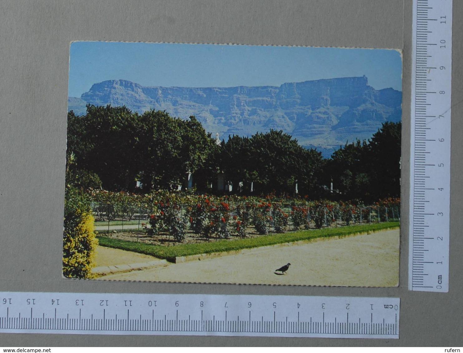 SOUHT AFRICA - BOTANICAL GARDENS -  CAPE TOWN -   2 SCANS  - (Nº25961) - Malawi