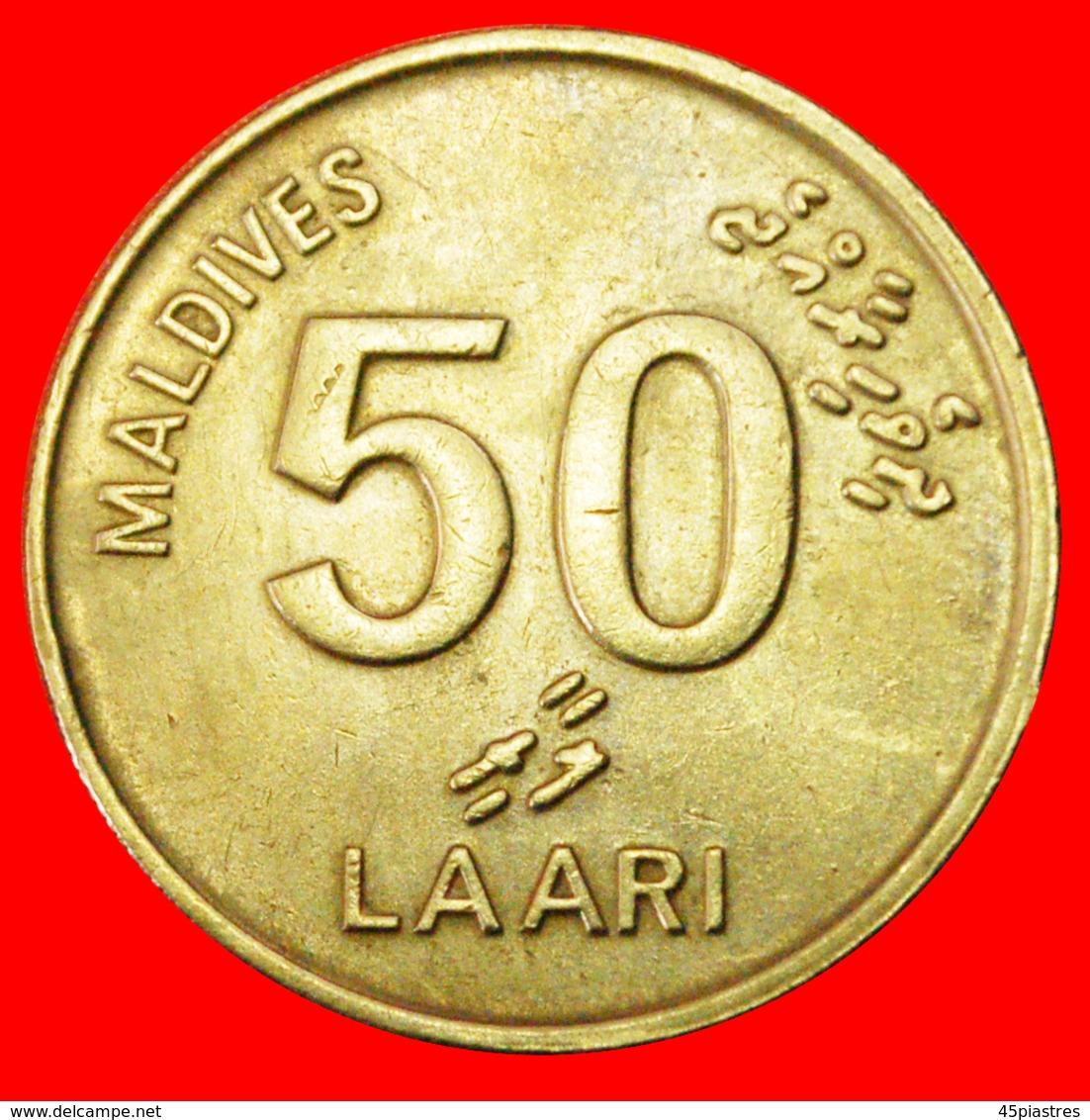# SEA TURTLE: MALDIVES ★ 50 LAARI 1415 1995! LOW START ★ NO RESERVE! - Maldive