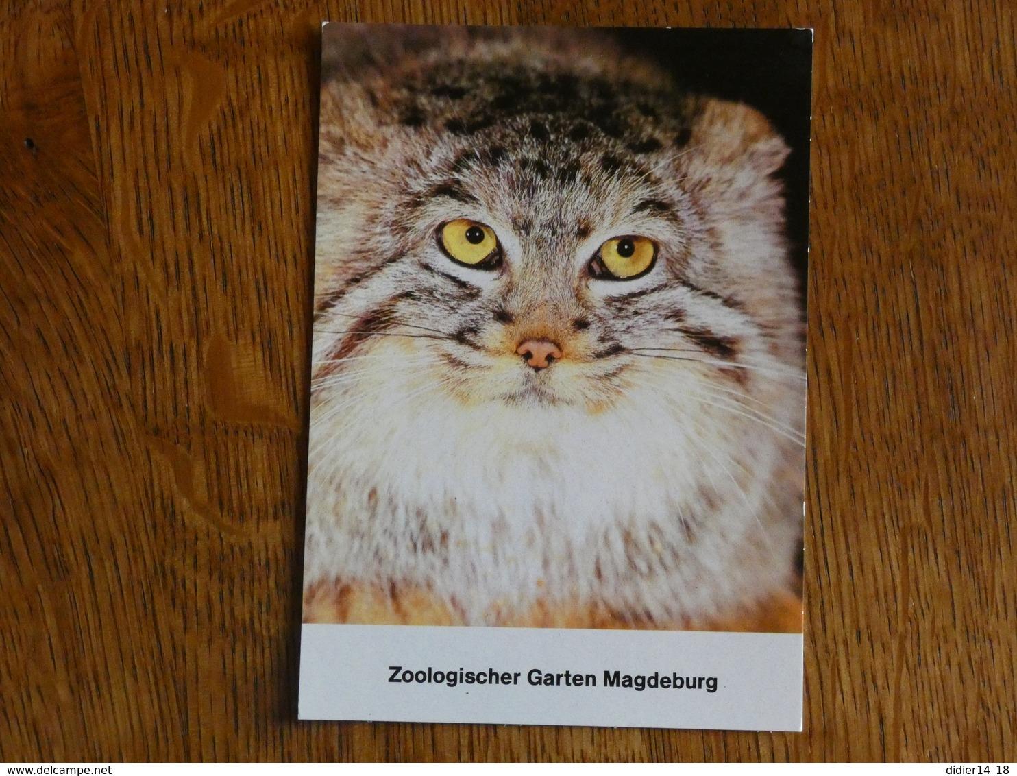 ZOO  TIERPARK  MAGDEBURG. MANUL. - Magdeburg