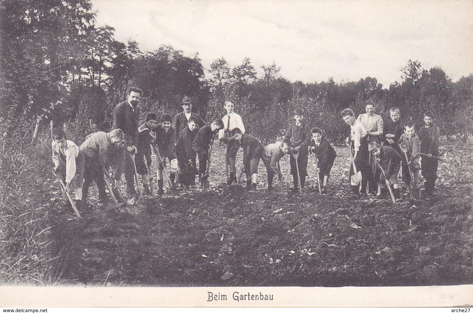 CPA - ILSENBURG - Beim Gartenbau - En Horticulture - Allemagne - Ilsenburg