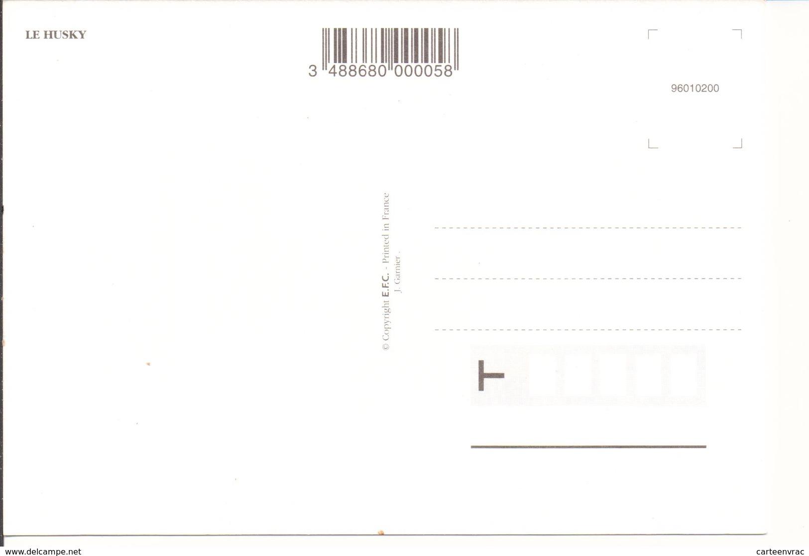 C16 Animaux Chiens Husky - Chiens