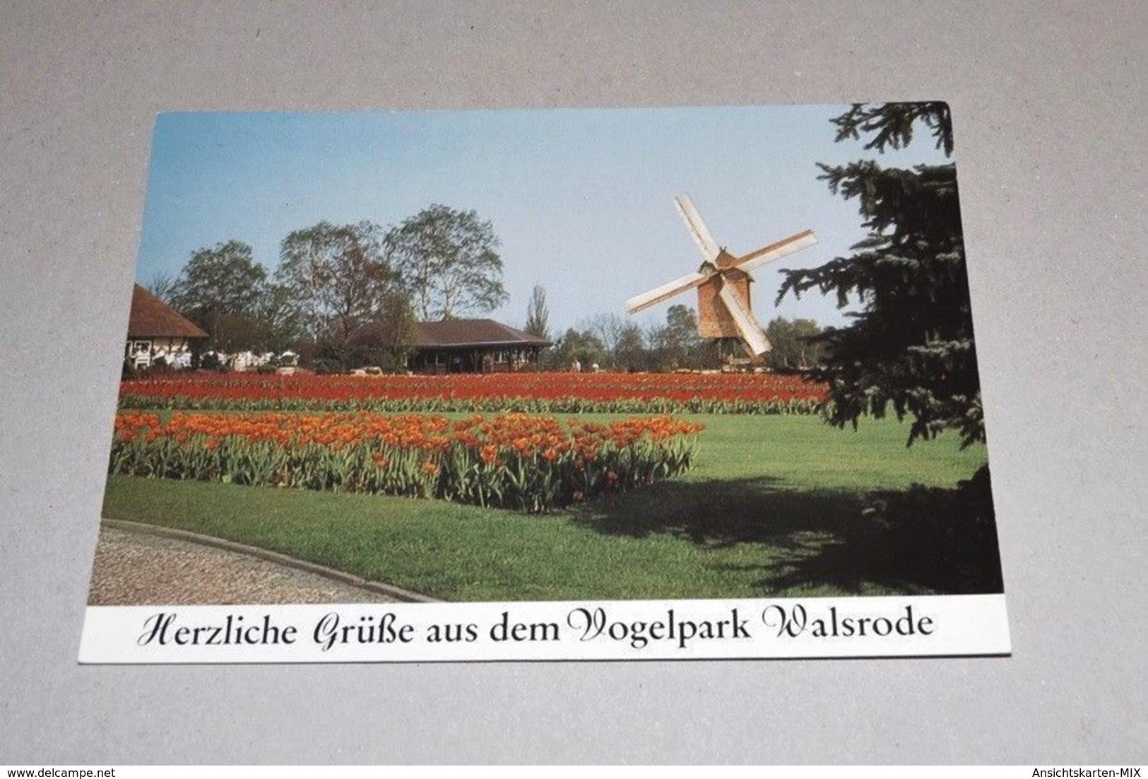 Ansichtskarte Vogelpark Walsrode-ungelaufen-Nr-25837-41 - Deutschland