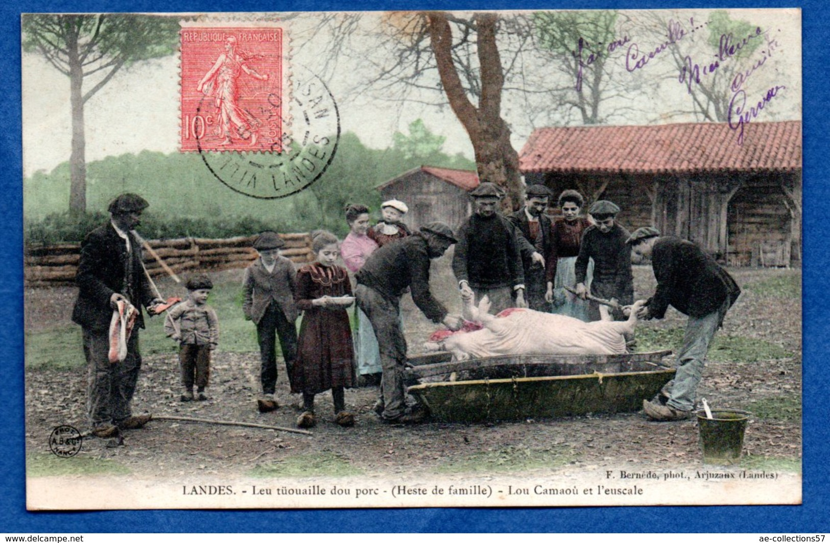 Landes - Leu Tuouaile Dou Porc - France