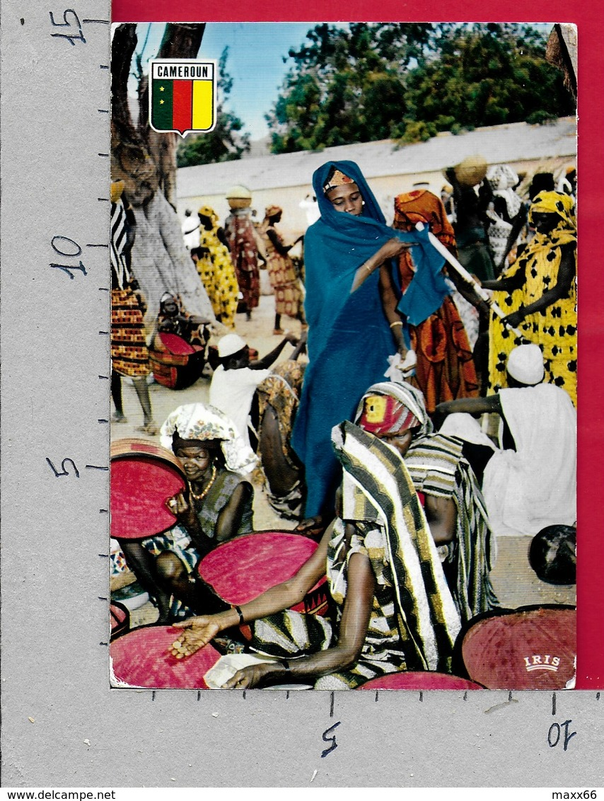 CARTOLINA NV CAMEROUN - MAROUA - Le Marché - 10 X 15 - Camerun