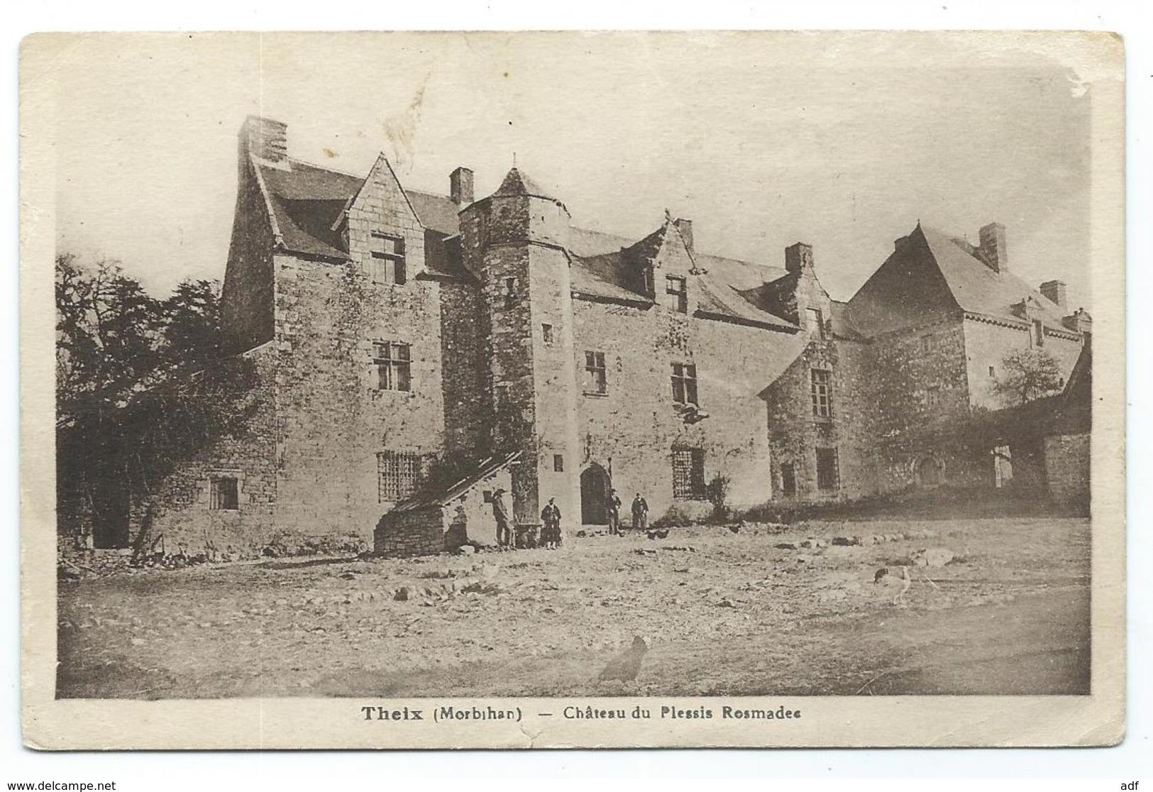 CPSM THEIX, PETITE ANIMATION DEVANT LE CHATEAU DU PLESSIS ROSMADEE, MORBIHAN 56 - France