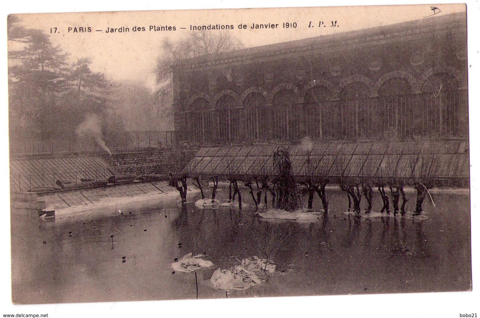 3340 - Paris 5e - Jardin Des Plantes - Inondations De Janvier 1910 - I8.P.M. N°17 - - Paris (05)