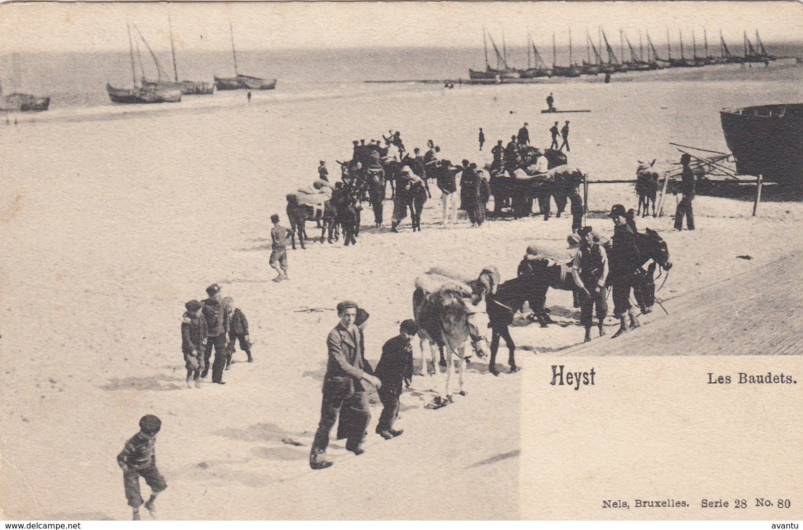 HEIST / LES BAUDETS  / DE EZELTJES 1912 - Heist