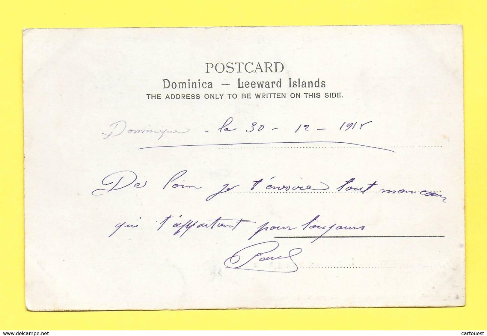DOMINICA - BOTANICAL STATION 1915 (DOMINIQUE) - Botanical Gardens - Dominique