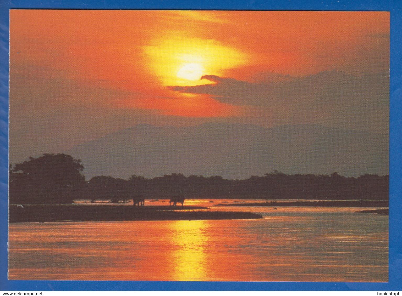 Simbabwe; Mana Pools - Simbabwe