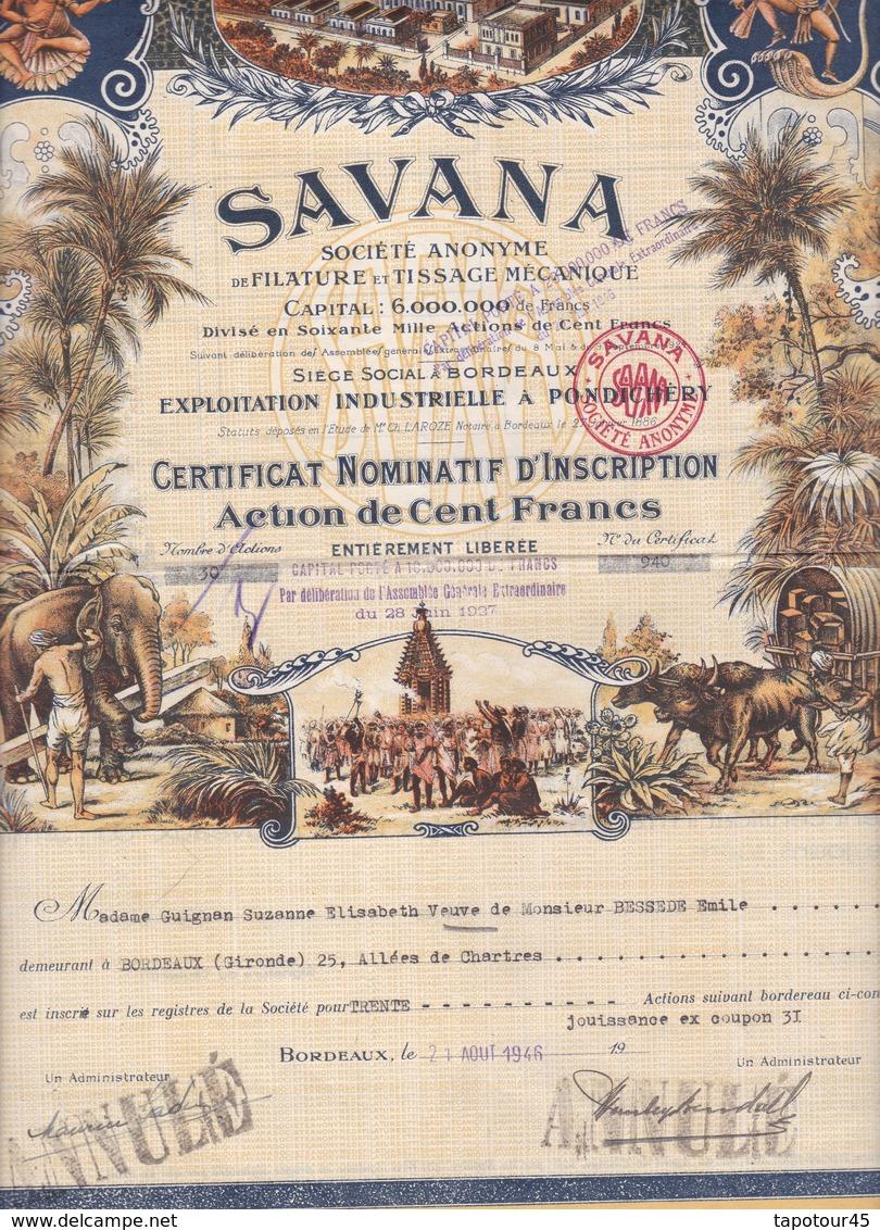 Th2SAVANA : Certificat(Jolie Décor) Grand Format  1946  (29) - Actions & Titres
