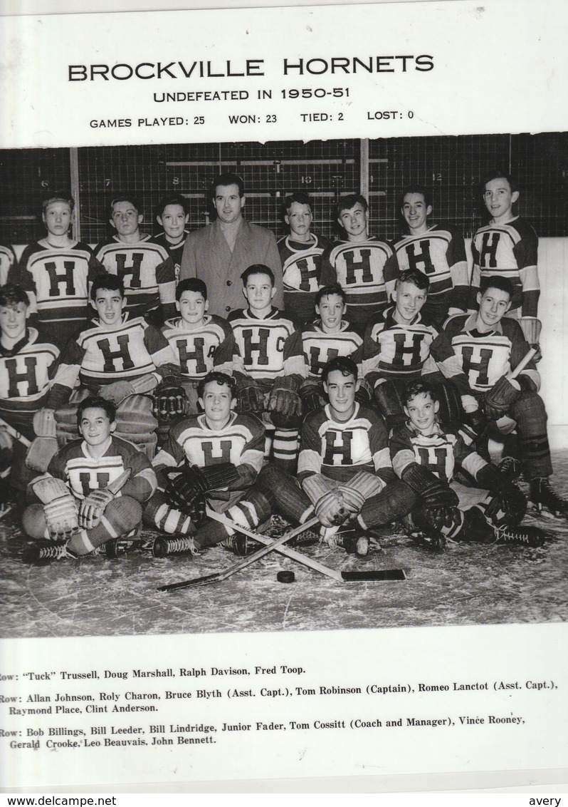 """Hockey   Brockville Hornets Undefeated In 1950-51 Won: 23  Tied: 2  Lost: 0  12"""" X 11.5""""  30 Cm X 29 Cm - Sports"""