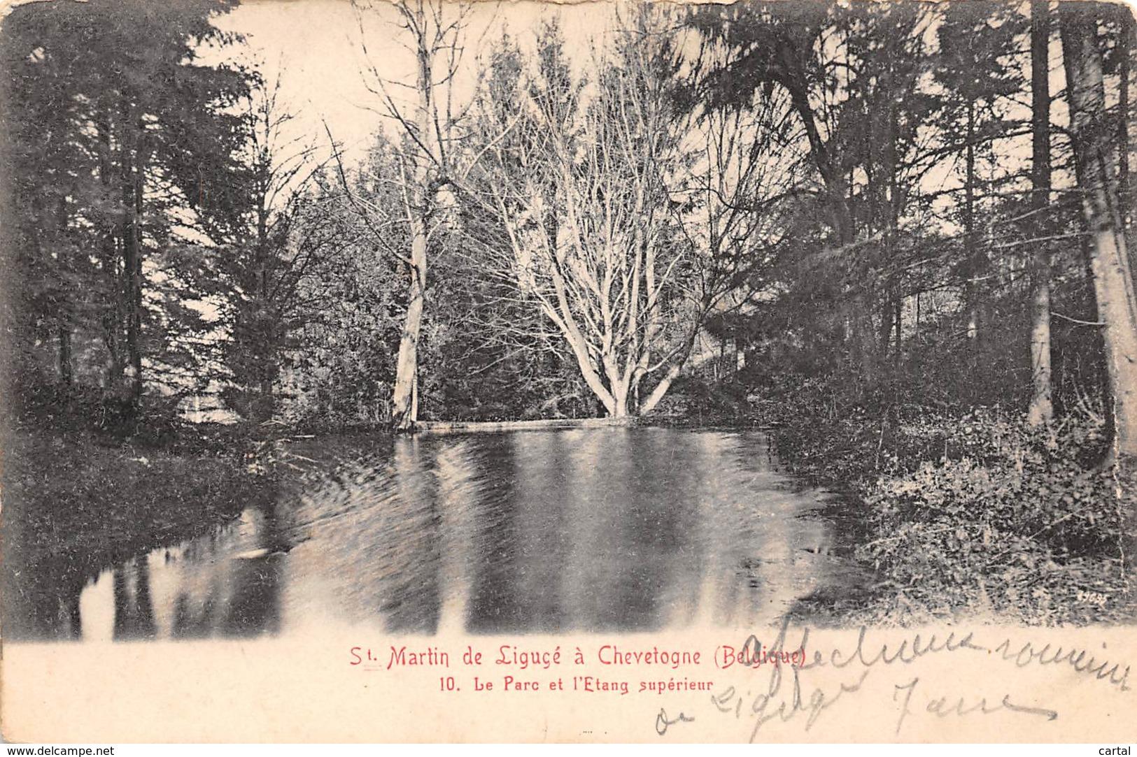 St. Martin De Ligucé à CHEVETOGNE - Le Parc Et L'Etang Supérieur - Ciney
