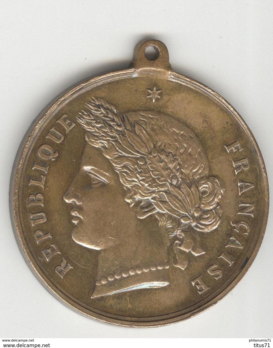 Médaille Conseil De Révision - Classe 1895 - Souvenir Du Tirage Au Sort - SUP - Professionnels / De Société