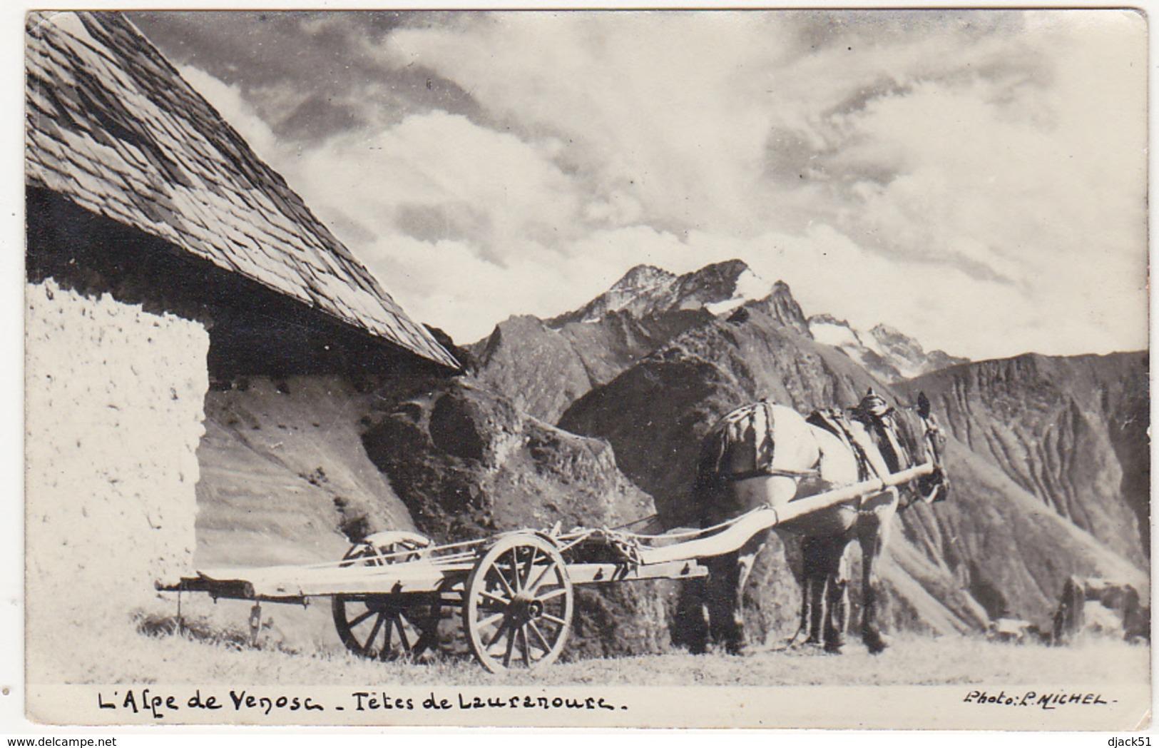 Ancienne Photographie  / L'Alpe De Venosc - Têtes De Lauranoure - Photo L. Michel - Lieux