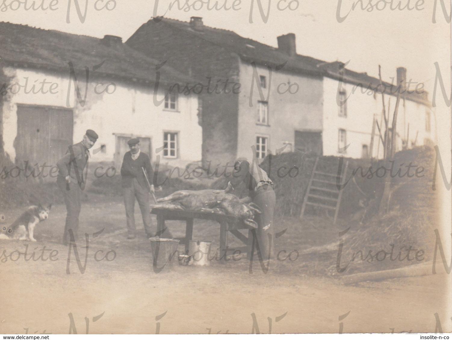 Photographie Ancienne 1902 Découpage Du Cochon Alle S/Semois - Lieux
