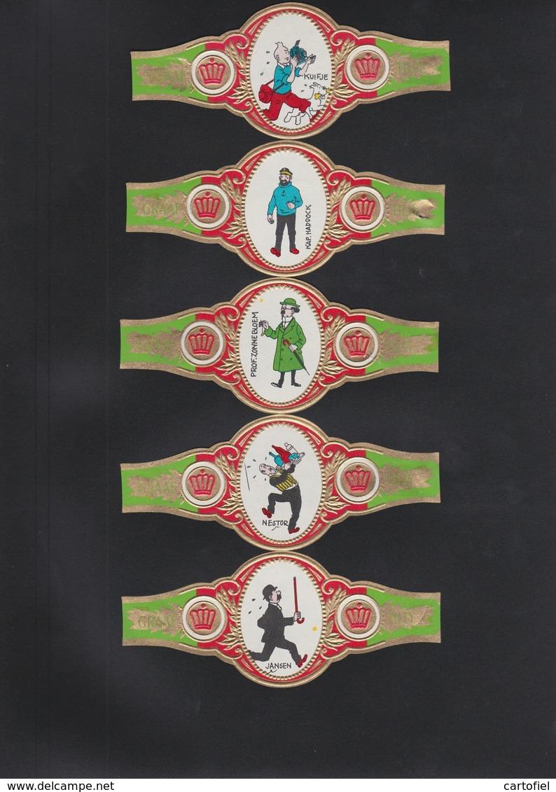 SIGAREBANDEN-GRAAF TILLY-5 BANDEN-GROOT FORMAAT-KUIFJE-TINTIN+MILOU-VINTAGE-GRAND FORMAT+-5-12 CM-VOYEZ LES 2 SCANS-RARE - Bagues De Cigares