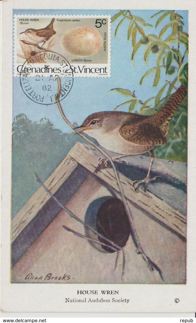 Saint Vincent Et Gren. Carte Maximum Oiseau 1978 Troglodyte 126 - St.Vincent & Grenadines