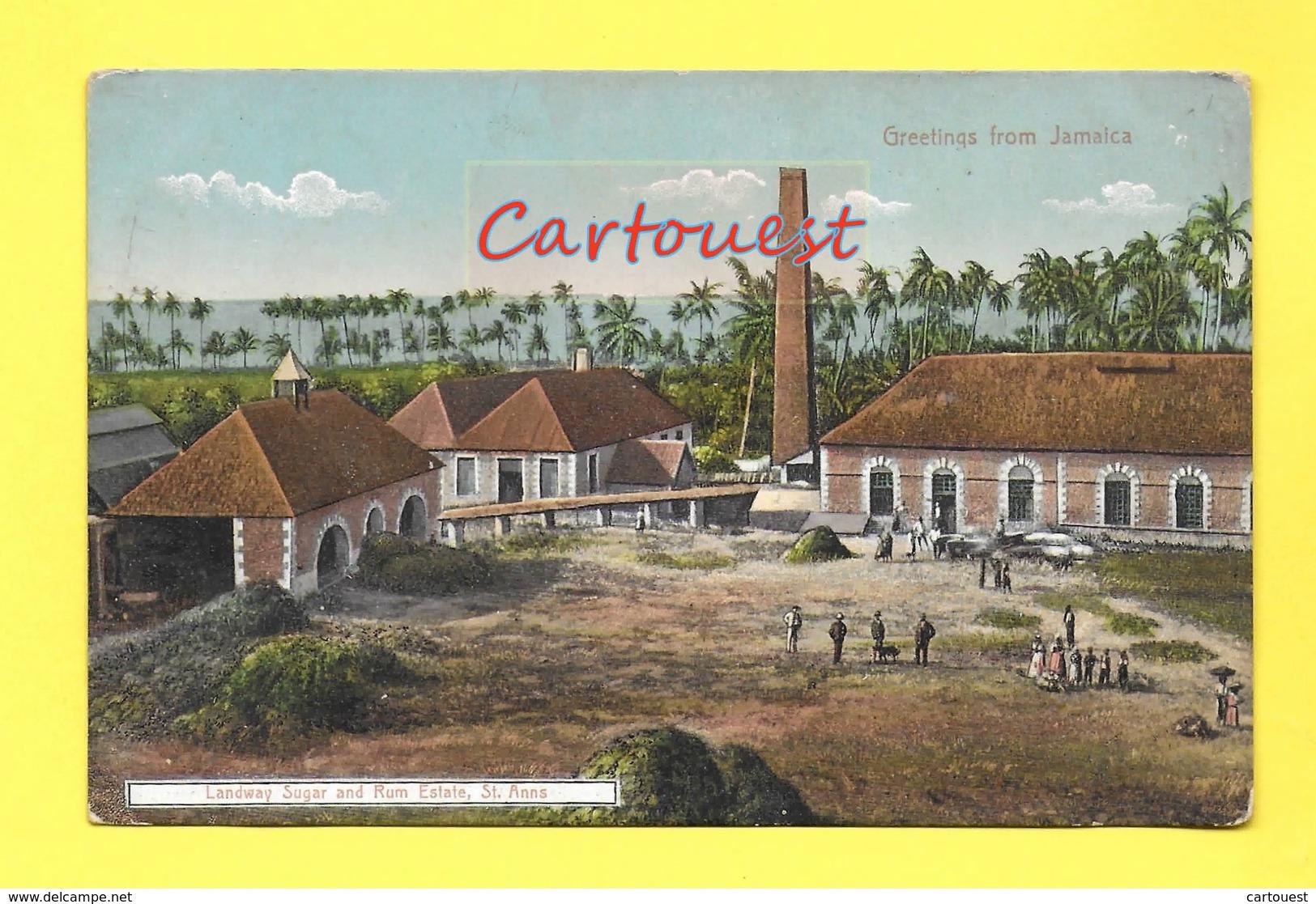CPA ¤¤ Jamaïque ¤¤ Landway Sugar And Rum Estate ¤¤ Greetings From Jamaica ( Chromo ) - Jamaïque