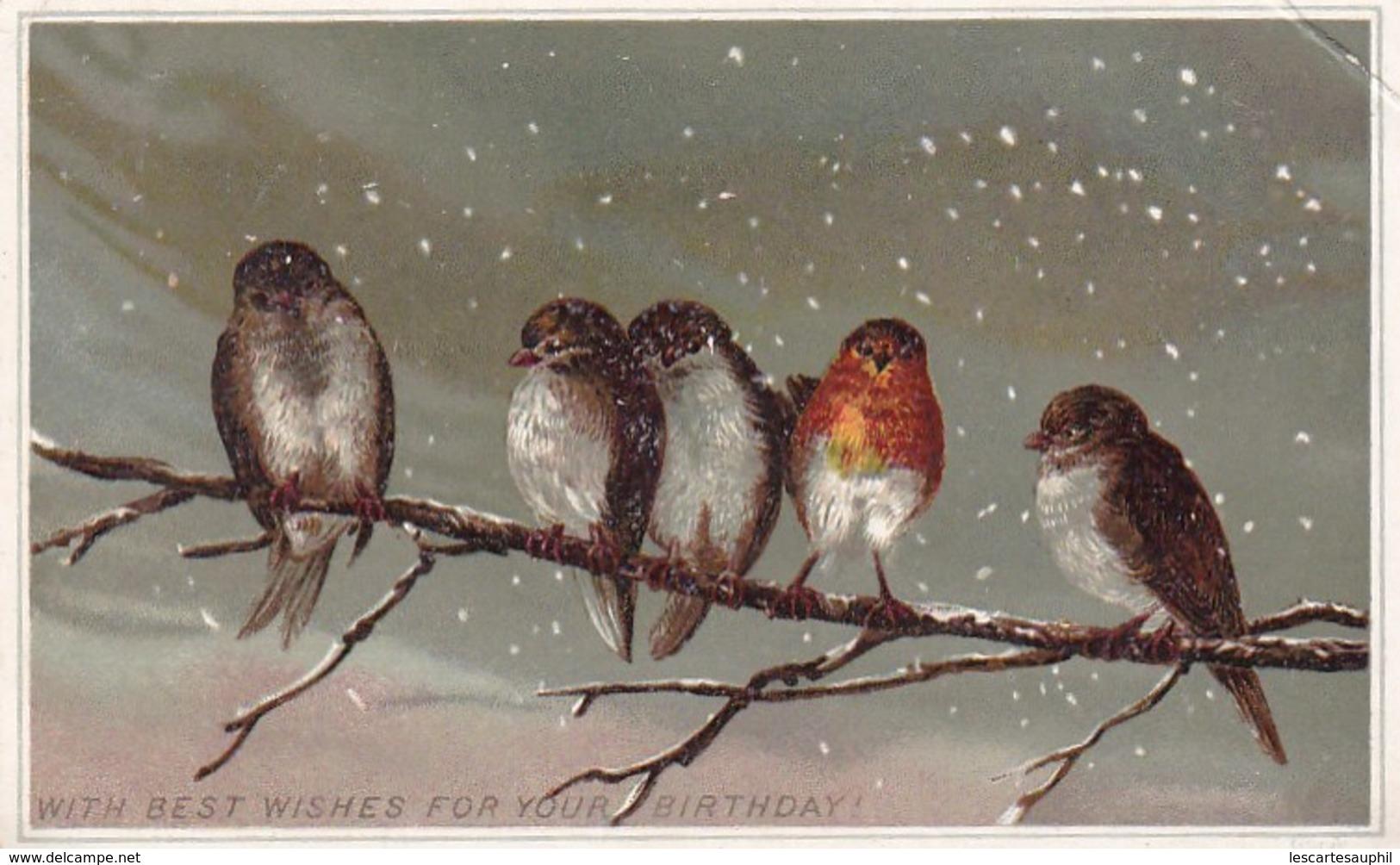 Rouge Gorge Et Petits Passereaux Hiver Sur Branche Illustrée Hiver 1886 - Chromo