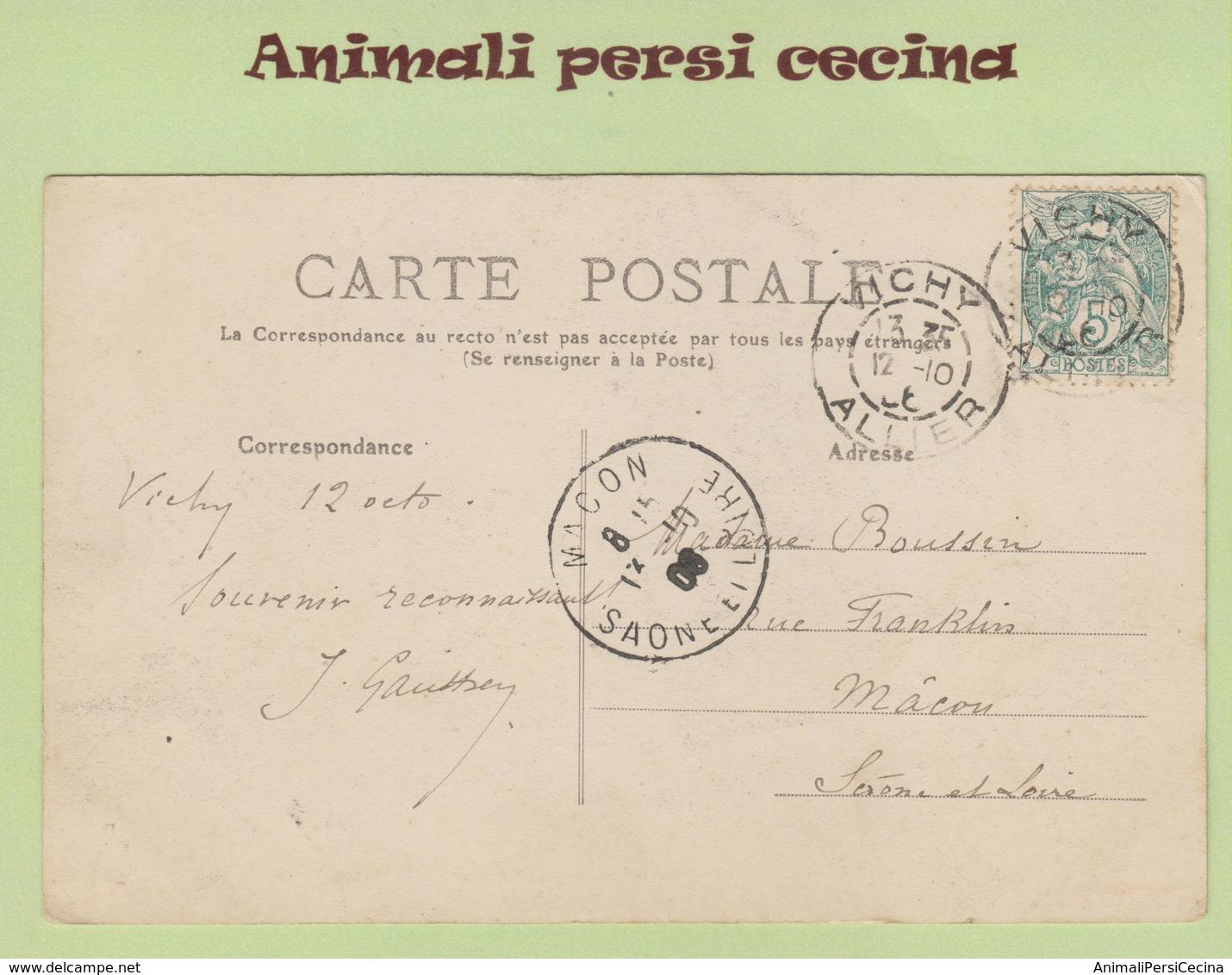 FRANCIA ALLIER VICHY - SOURCE CHOMEL - VIAGGIATA - LT60-057 - Vichy