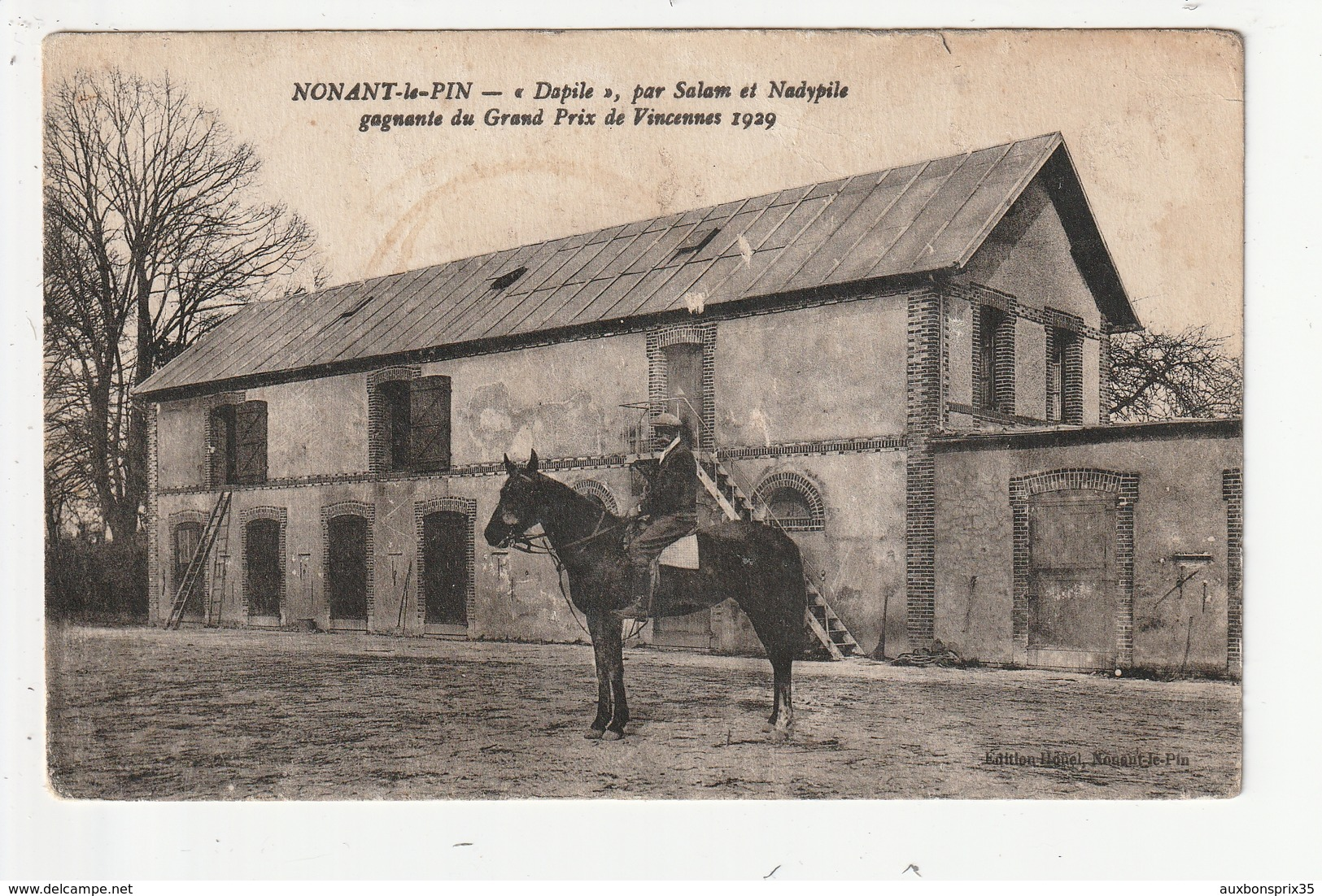 NONANT LE PIN -CHEVAL  DAPILE PAR SALAM ET NADYPILE GAGNANTE DU GRAND PRIX DE VINCENNES 1929 - 61 - France