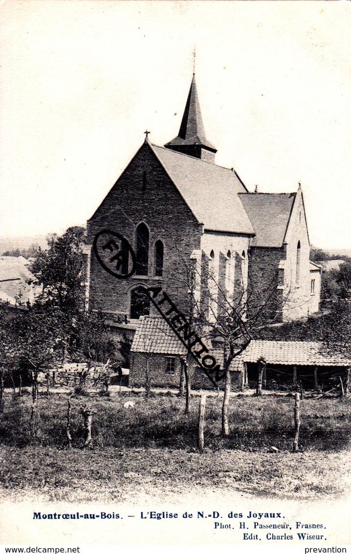 MONTROEUL-AU-BOIS - L'Eglise De N.-D. Des Joyaux - Frasnes-lez-Anvaing