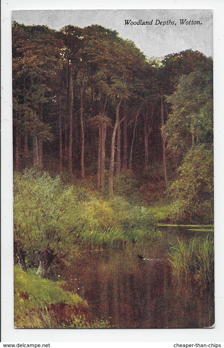 Woodland Depths, Wotton. - Sutton Palmer - Black Series 38 - Surrey