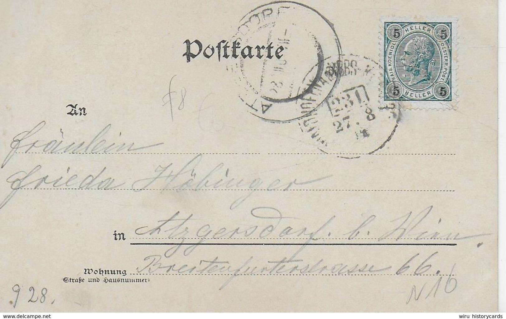 AK 0098  Die Noth Im Steinbachthale Bei Göstling - Verlag Ledermann Um 1904 - Scheibbs