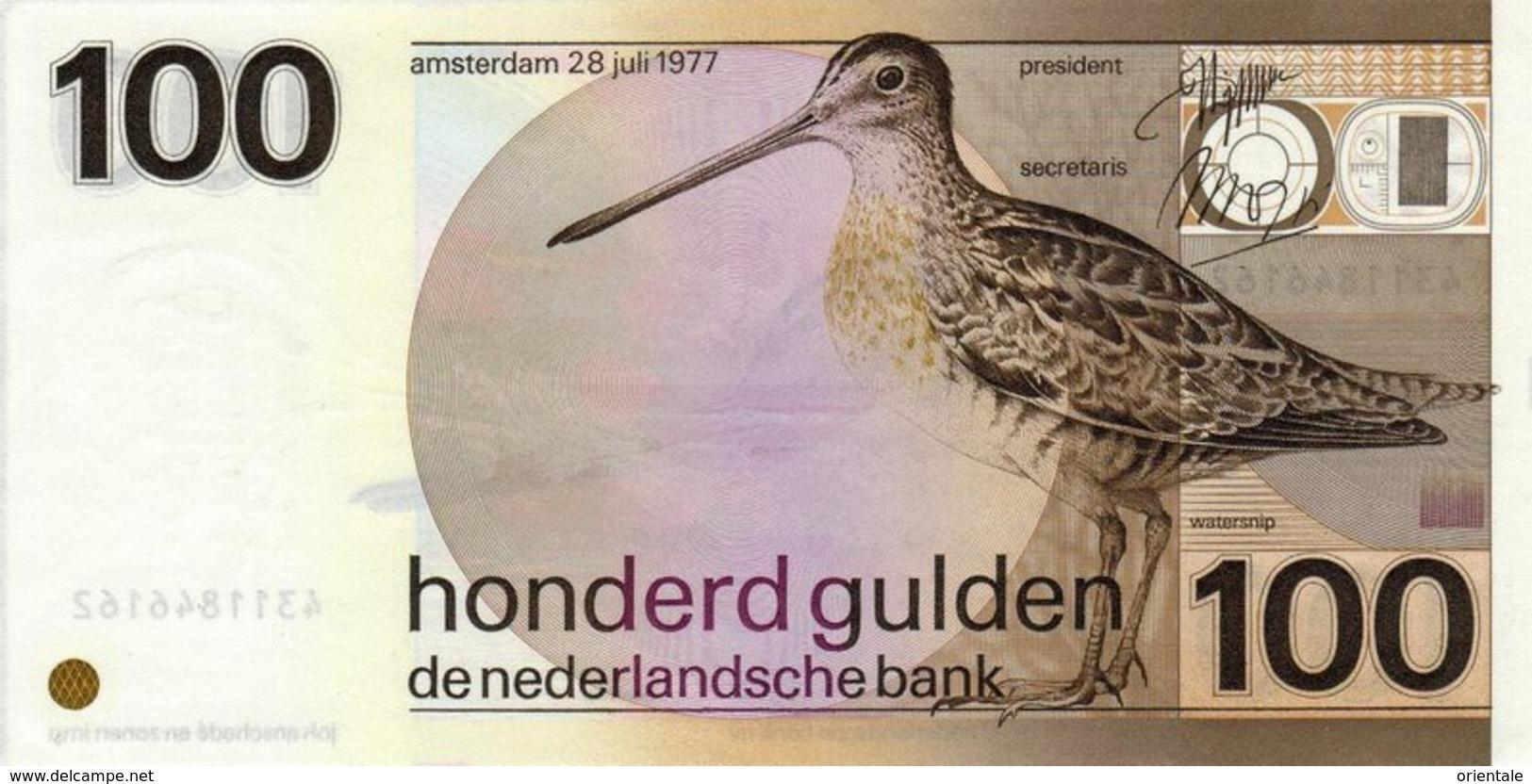 NETHERLANDS   P. 97 100 G 1977 UNC - [2] 1815-… : Royaume Des Pays-Bas