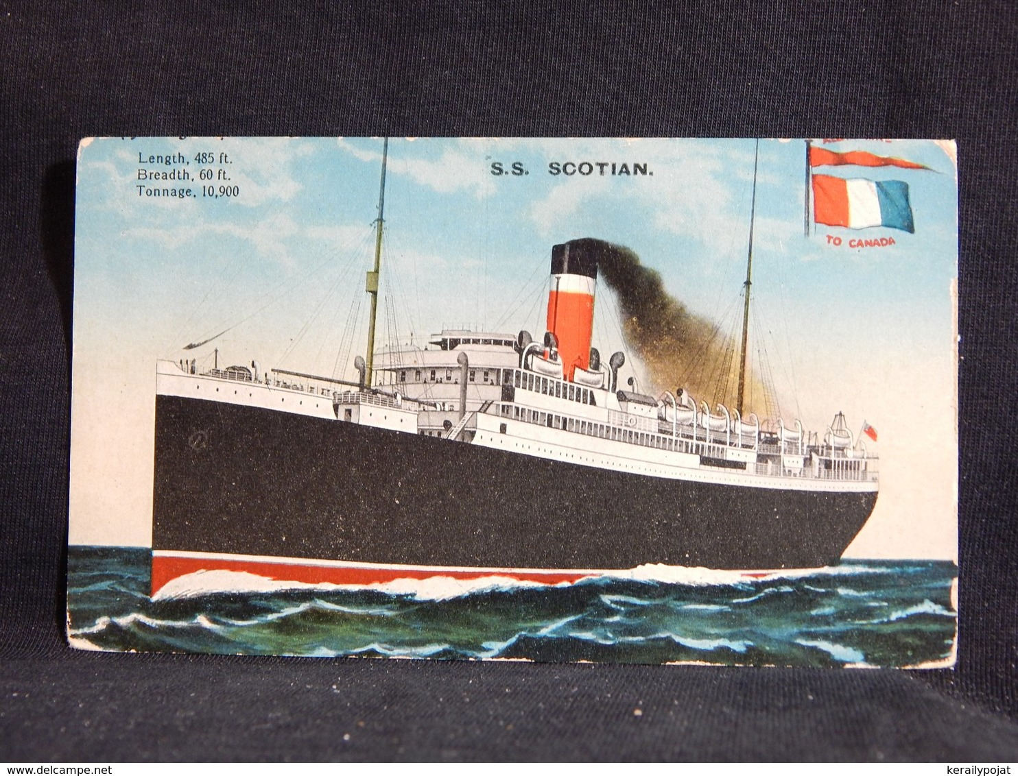 Steamer S.S. Scotian__(22762) - Paquebote