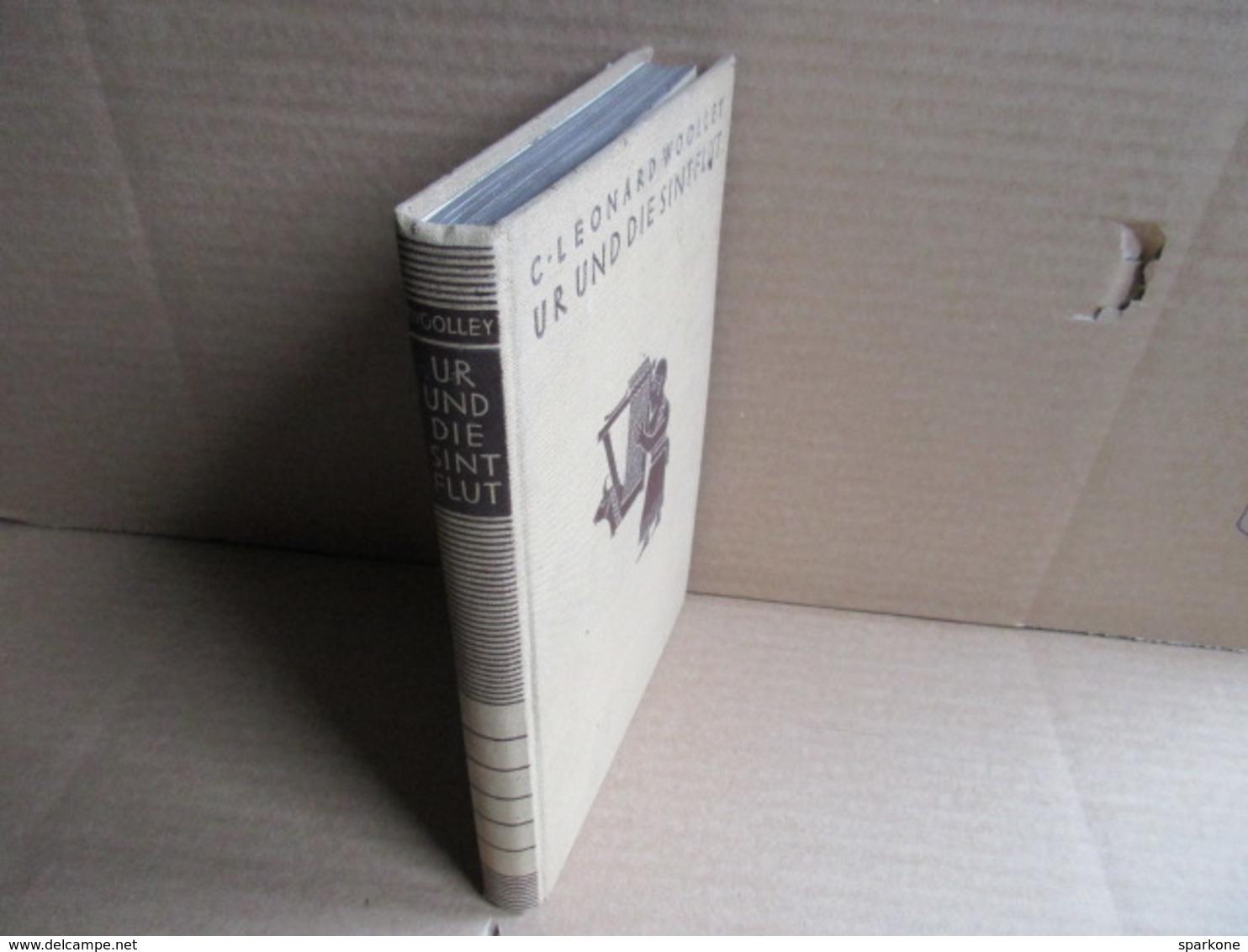 Ur Und Die Sintflut (C. Léonard Wooley) éditions De 1930 - Livres, BD, Revues