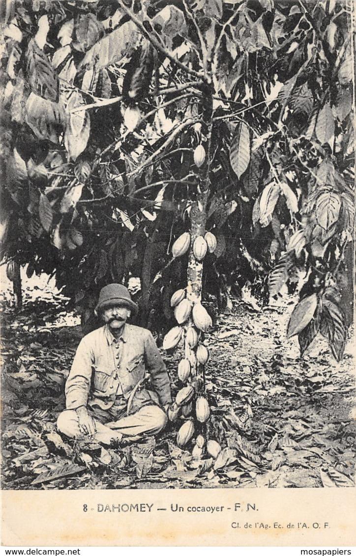 Dahomey - Un Cocaoyer - Dahomey