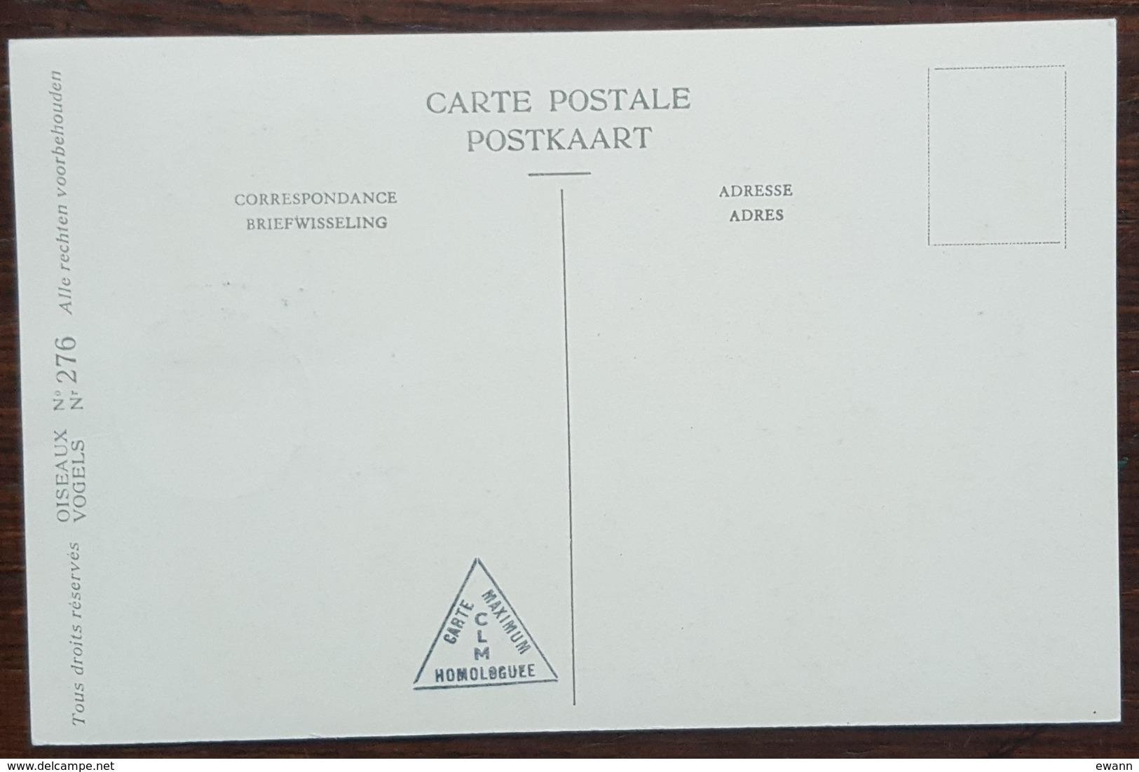 Hongrie - Carte Maximum / CM 1962 - Faune / Oiseaux / Vanneau Huppé - Tarjetas – Máximo