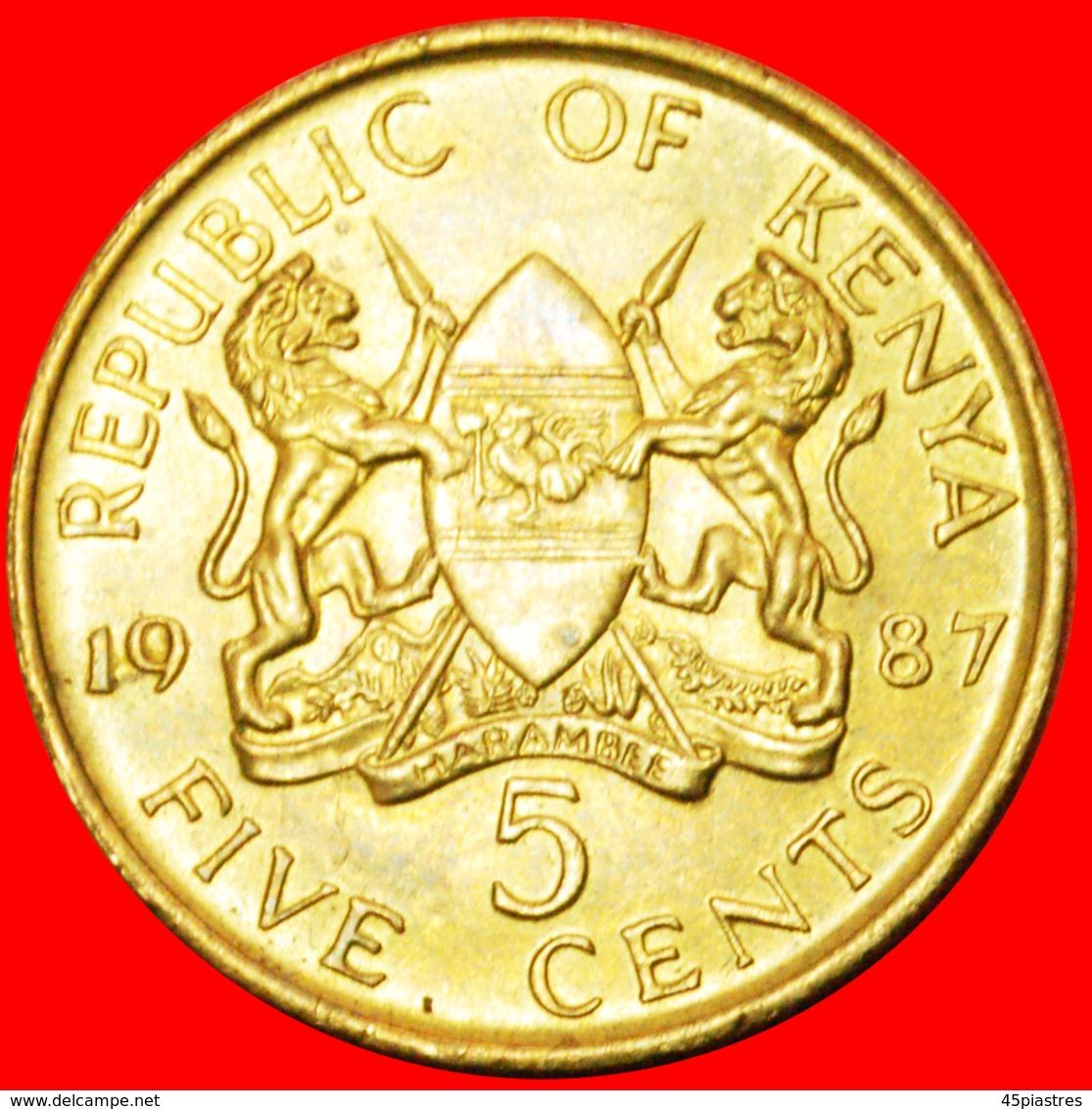 # COCK AND LIONS (1978-1991): KENYA ★ 5 CENTS 1987 MINT LUSTER! LOW START ★ NO RESERVE! - Kenya