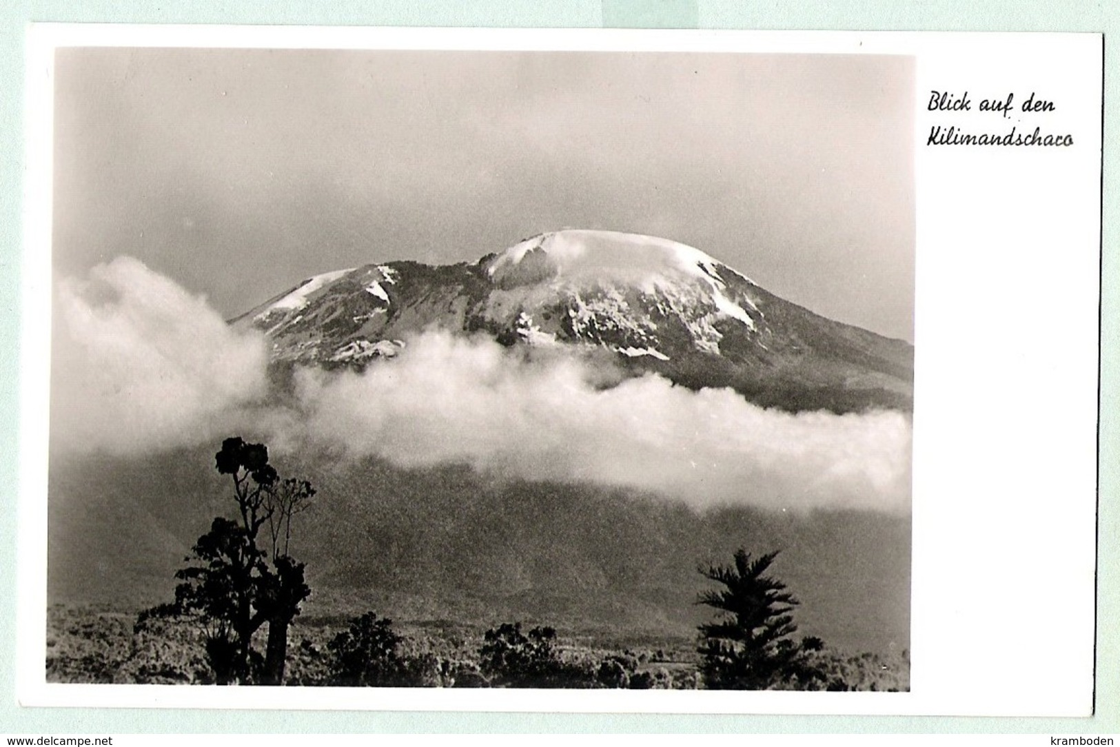 Kilimandscharo Echt Foto 1926 Kibo - Tansania