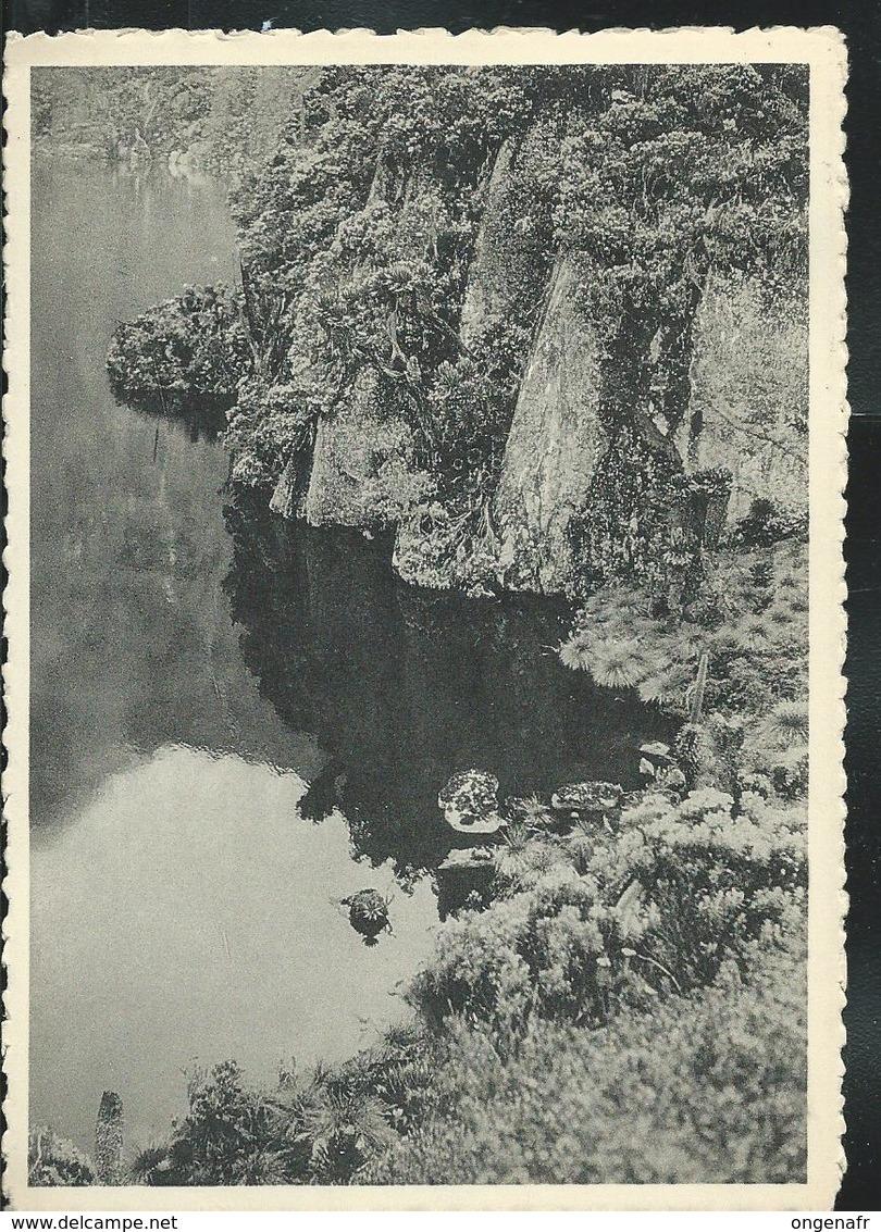 Carte-vue De Ruwenzor; Le Lac Speke) Avec N° 166 (masque)  Obl. Kis .. Vers Verviers 1957 - Ruanda-Urundi