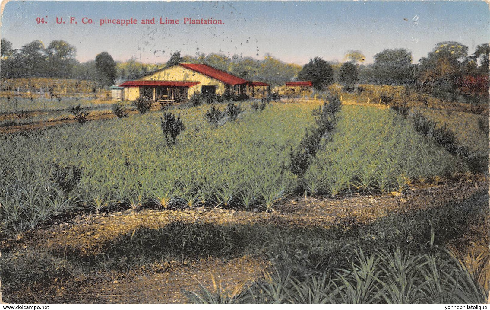Costa Rica / 52 - Lime Plantation - Belle Oblitération - Costa Rica