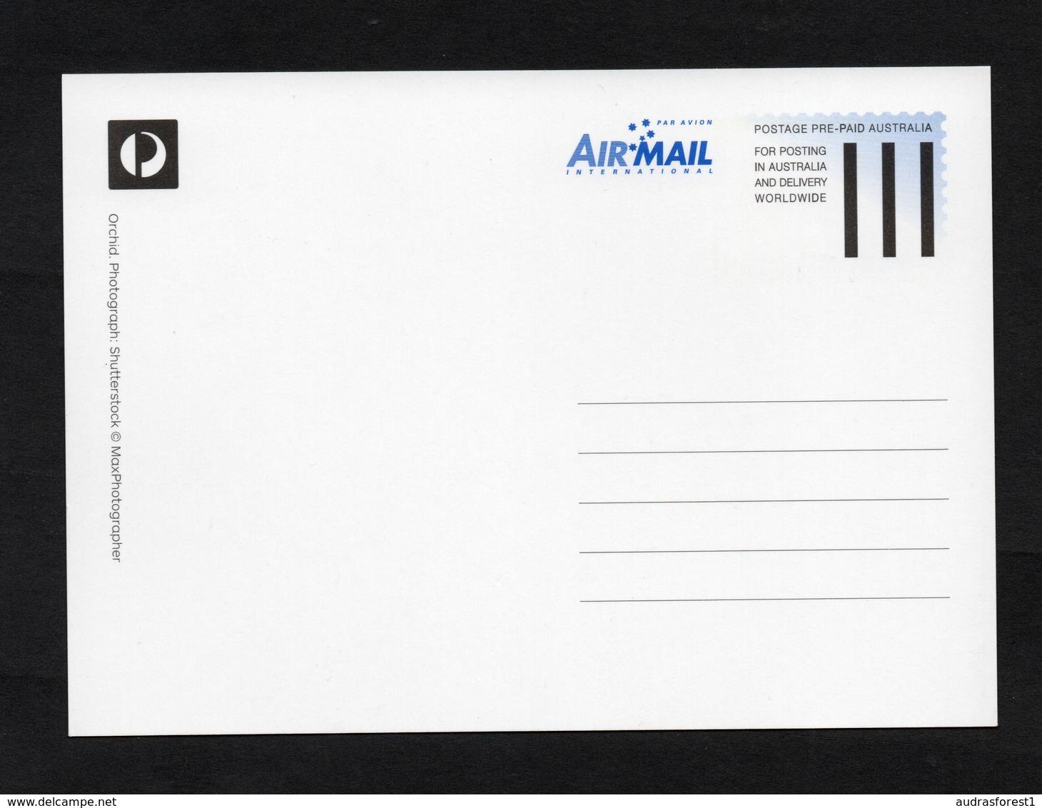 2013 ORCHID POSTAGE PRE-PAID AUSTRALIA WORLDWIDE AIRMAIL MAXIMUM CARD 60c FIRST DAY ISSUE CANCEL 05/02/2013 - Maximumkarten (MC)