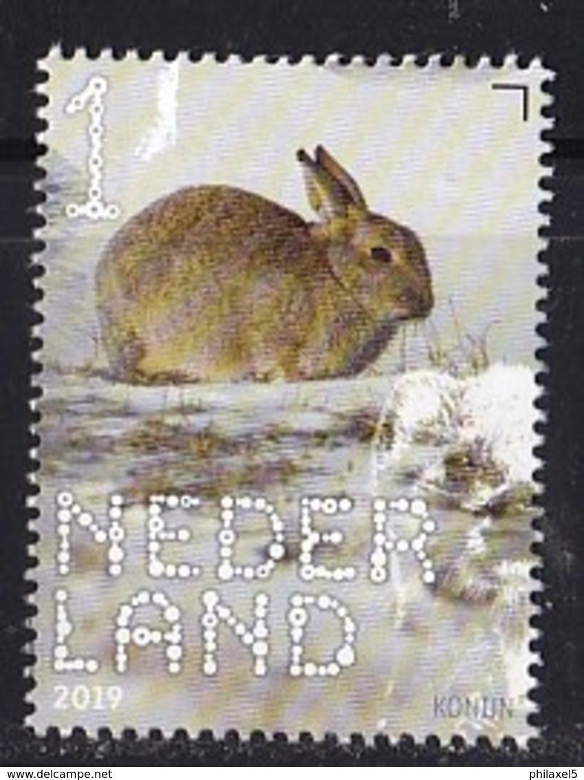 Nederland – 2 Januari 2019 – Beleef De Natuur – Zoogdieren – Konijn (Oryctolagus Cuniculus) – MNH - Neufs
