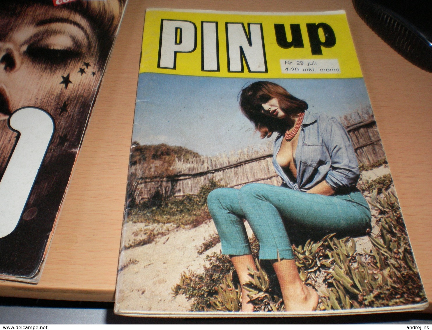 Porno Pin Up - Scandinavian Languages