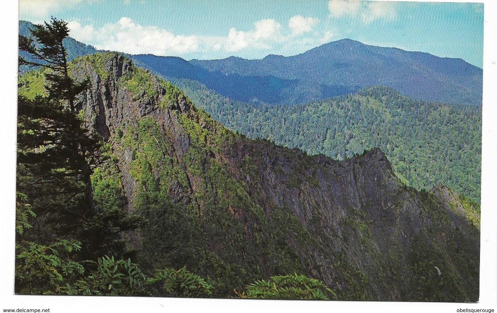 Great Smoky Mountains National Park (Tennessee, USA APPALACHIAN TRAIL - Smokey Mountains