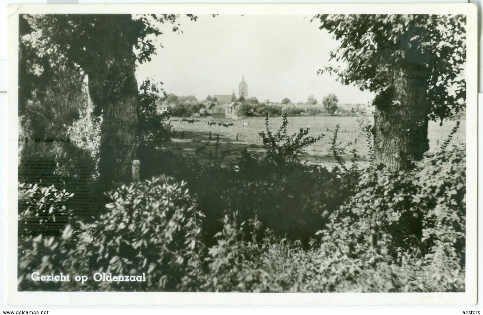 Gezicht Op Oldenzaal 1958 - Gelopen. (G. Bruggeman - Oldenzaal) Lees Info! - Nederland