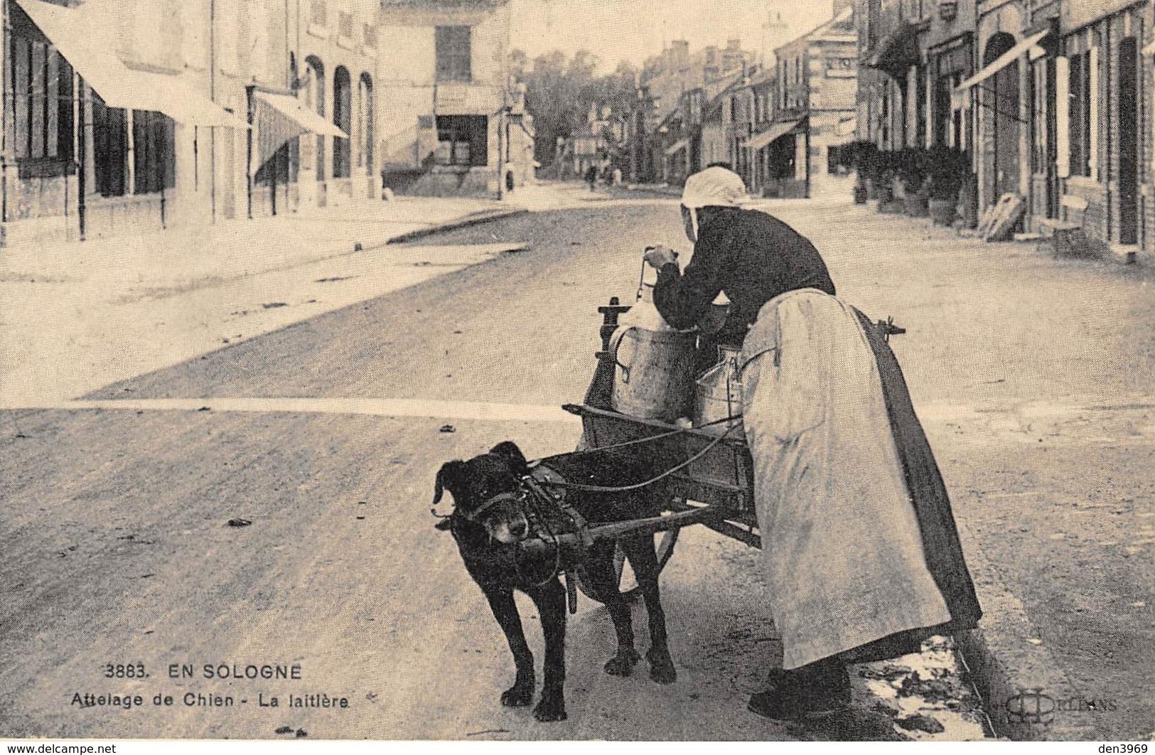En Sologne - Attelage De Chien - La Laitière - Cecodi N'49 - Francia